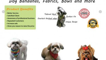 Pet Accessories Website